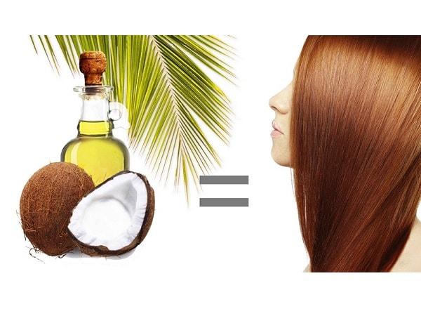 3 Công thức phục hồi tóc hư tổn bằng dầu dừa đơn giản tại nhà 1