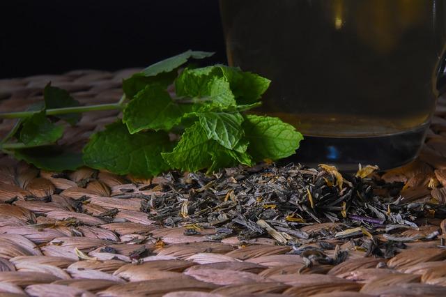 son bóng dưỡng môi chiết xuất từ lá bạc hà