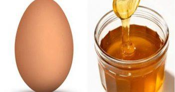 dưỡng tóc bằng mật ong và trứng gà
