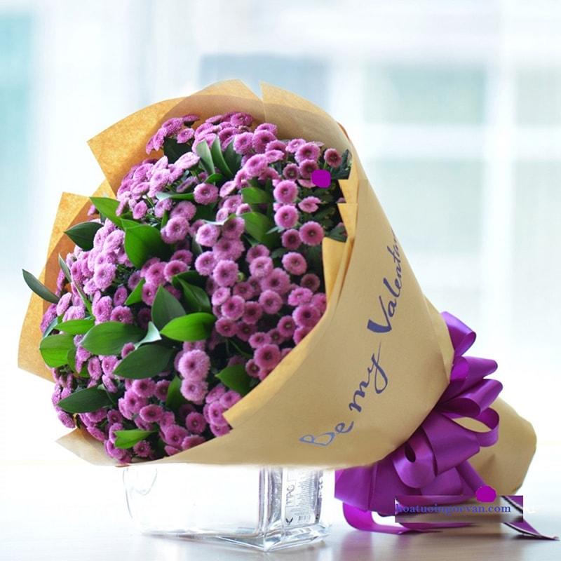 Hoa cúc tím Calimero